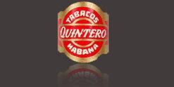 Quintero (bundles)